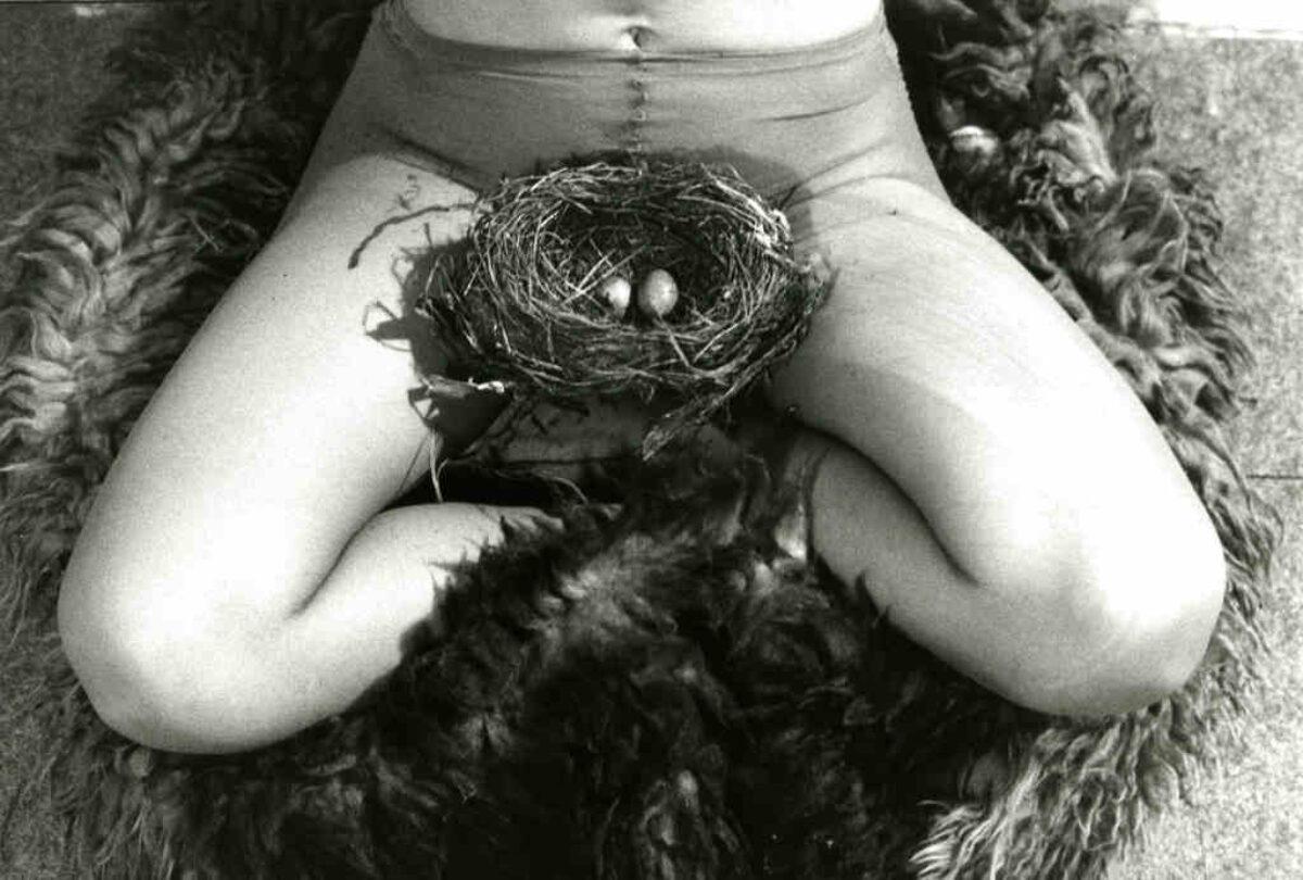 Musas Del Porno Anos 60 feminismes!» una mirada feminista del arte contemporáneo