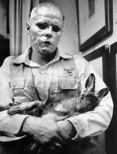 Cómo explicar un cuadro a una liebre muerta. 1965