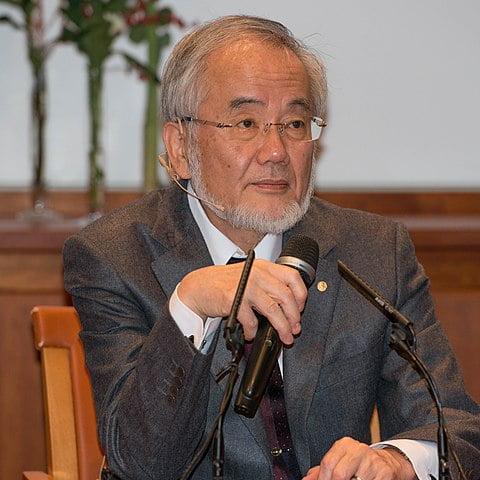 Yoshinori Ohsumi