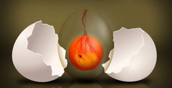 El huevo eterno